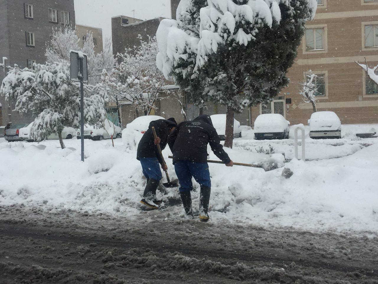 تداوم عملیات برف روبی در جنوب تهران / برف تکانی درختان منطقه 20 ادامه دارد