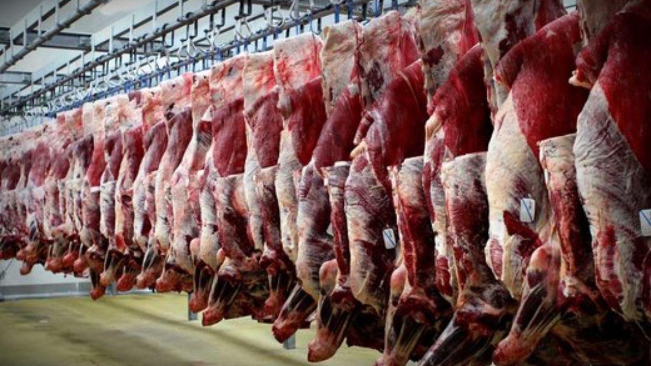 کاهش ۶ هزار تومانی نرخ هر کیلو شقه گوسفندی در بازار